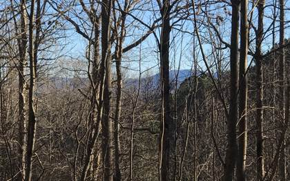 Lots And Land for sale in 47 FLAGPOLE ROAD Lot 47, Ellijay, GA, 30540