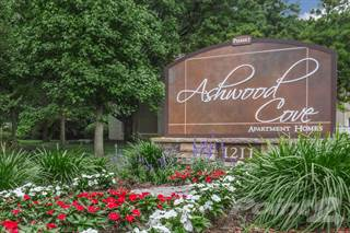 Apartment for rent in Ashwood Cove III, Murfreesboro City, TN, 37130