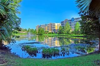 Condo for rent in 960 STARKEY ROAD 3304, Largo, FL, 33771