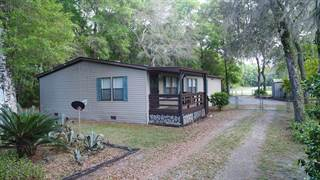Residential Property for sale in 8150 174 Place, Fanning Springs, FL, 32693