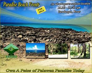Land for sale in Taradungan, Roxas, Palawan