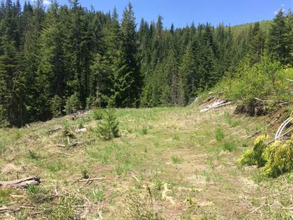 Lots And Land for sale in 380 Pinecone Ln, Saint Maries, ID, 83861