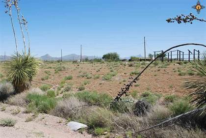 Lots And Land for sale in Circle Drive, Animas, NM, 88020