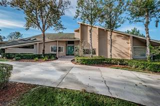 Single Family for sale in 3010 AUTUMN DRIVE, Palm Harbor, FL, 34683