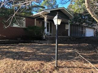 Single Family for sale in 1080 White Oak Drive, Diamond City, AR, 72644