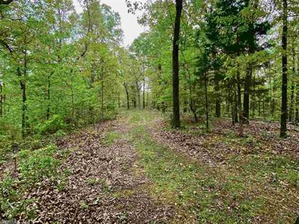 Lots And Land for sale in Grandpa Jones Road, Mountain View, AR, 72560