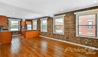Apartment for rent in 1640 N Damen Apartments - 1 Bedroom - 1 Bath, Chicago, IL, 60647