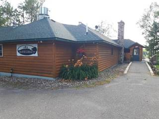 Comm/Ind for sale in 2010 BEAVER LODGE RD, Mercer, WI, 54547