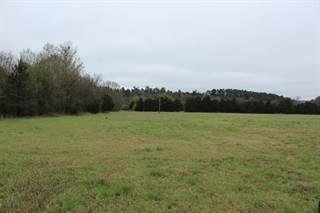 Land for sale in 2310 CR 3190, Clarksville, AR, 72830
