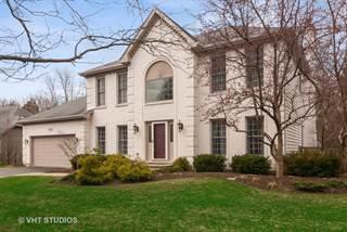 Single Family for sale in 1411 Jonester Court, Naperville, IL, 60563