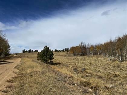 Lots And Land en venta en 730 Superstition Trail, Hartsel, CO, 80449