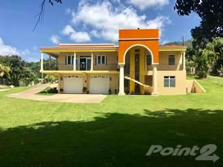Residential Property for sale in Bo. Santa Rosa, Jayuya PR, Jayuya, PR, 00664