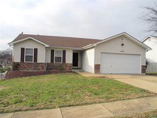 Single Family for sale in 1125 Valentine, Festus, MO, 63028