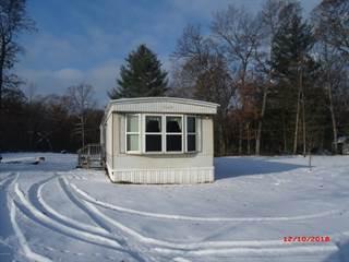 Single Family for sale in 9231 N Woodbridge Drive, Merrill, MI, 49309