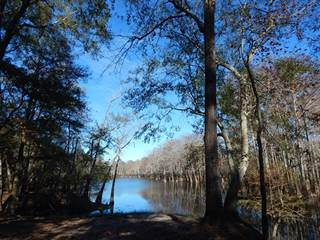Residential Property for sale in 476 Old Hwy 35 South, Sandy Hook, MS, 39478