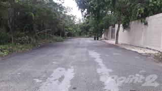 Land for sale in Lot for sale in Playa del Carmen. NR511, Playa del Carmen, Quintana Roo