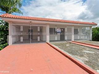 Single Family for sale in - BO ODA HONDA KM 10 1 CARR 181 SAN LORENZO, PUERTO RICO 00754, Quebrada Honda, PR, 00754