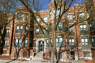 Apartment for rent in Pangea Commons   5046 S Champlain Ave   2 Bedroom 1  BathHouses   Apartments for Rent in Bronzeville IL   From  747 a month  . 2 Bedroom Apartments For Rent In Chicago Il. Home Design Ideas