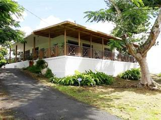 Single Family for sale in 803 PALOS BLANCOS, Corozal, PR, 00783