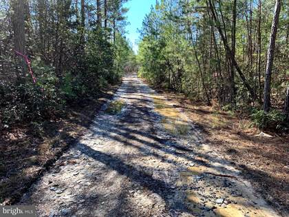 Farm And Agriculture for sale in LONGFIELD, Colonial Beach, VA, 22443