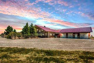 Farm And Agriculture for sale in 2074 Summit, Franktown, CO, 80116