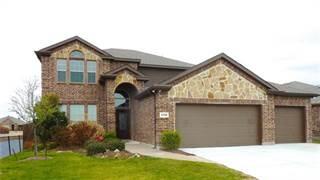 Single Family for rent in 5720 Glenbrooke Drive, Prosper, TX, 75078