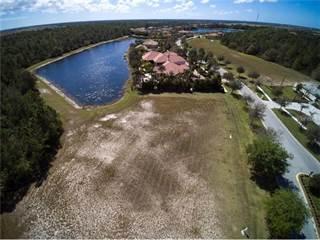 Land for sale in 19312 GANTON AVENUE, Bradenton, FL, 34202