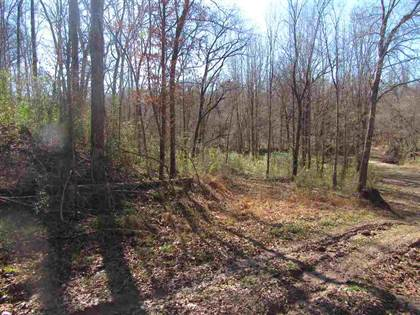 Lots And Land for sale in 00 RODNEY RD, Port Gibson, MS, 39096