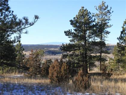 Lots And Land for sale in 64 Winchester Drive, Roundup, MT, 59072
