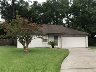 Single Family for sale in 3199 PABLO WOODS DR, Jacksonville, FL, 32224