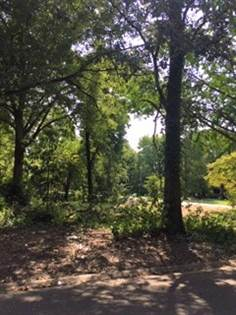 Lots And Land for sale in 411 N. Johnson, Charleston, MO, 63834
