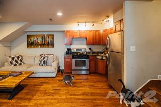Apartment for rent in 1431 W. Cortez - Three Bedroom, Chicago, IL, 60642