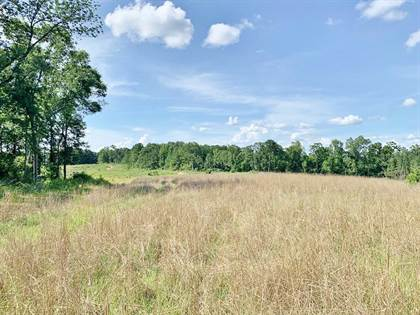 Lots And Land for sale in 6000 Red Lick Road, MS, 39096