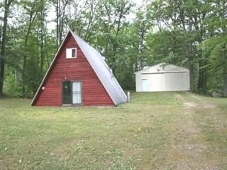 Single Family for sale in 4425 CRANBERRY LAKE ROAD, Harrison, MI, 48625