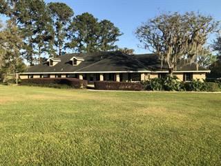 Single Family for sale in 8778 NW 130th Street, Reddick, FL, 32686