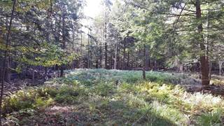 Land for sale in Off Kehoe Road, Sandy Creek, NY, 13145