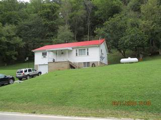 Single Family for sale in 7317 Mountaineer Highway, New Martinsville, WV, 26155