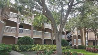 Miraculous Hunters Creek Fl Condos For Sale From 169 950 Point2 Homes Download Free Architecture Designs Griteanizatbritishbridgeorg