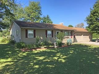 Single Family for sale in 1605  County Road 1175E, Cisne, IL, 62823
