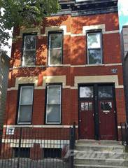 Apartment for rent in 1346 W. Webster, Chicago, IL, 60614