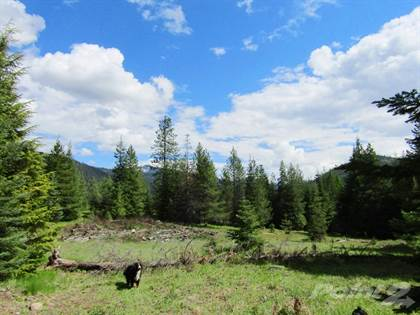Lots And Land for sale in nhn Recluse Drive, Troy, MT, 59935
