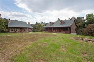 Single Family for sale in Bryant Ridge Rd, Morgantown, KY, 42261