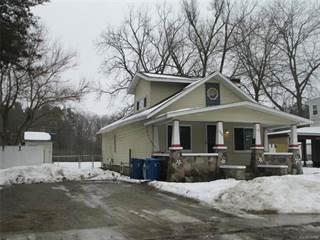 Single Family for sale in 1006 GRANGER Street, Fenton, MI, 48430