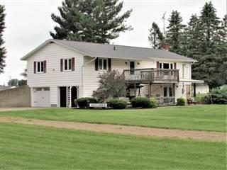 Single Family for sale in 128 DONS Drive, Algansee, MI, 49082