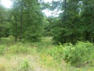 Land for sale in Lot 1 Stonegate, Mccomb, MS, 39648