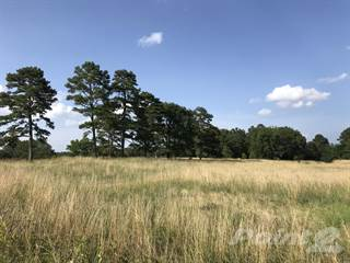 Land for sale in TBD Hwy 270 East+, Mount Ida, AR, 71957