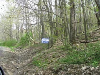 Lots And Land for sale in Brown Rd, Windsor, NY, 13795