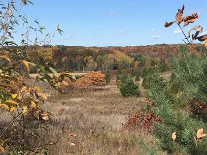 Lots And Land for sale in N 144th Avenue, Walkerville, MI, 49459