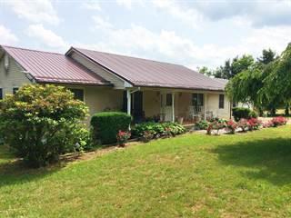 Single Family for sale in 289 Radford RD SE, Floyd, VA, 24091