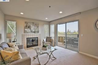 Condo for sale in 681 Royston Ln 329, Hayward, CA, 94544